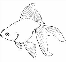Small Picture Free Of Printable Coloring Pages Fish Coloring Pages Of Fish Angel