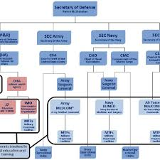 Governance Structure Of The Military Health System