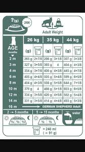 Dog Food Chart By Weight And Age Gsd Food Amount Chart German Shepherd Food Dog Breeds