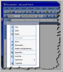 microsoft word menus ms word menu