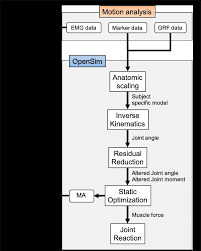 Flow Chart For Data Processing From Motion Capture To