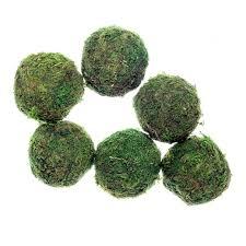 Decorative Moss Balls Michaels
