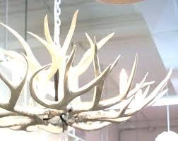 antler chandelier for white antler chandelier white antler chandeliers large size of chandelier for deer modern best new white antler chandelier