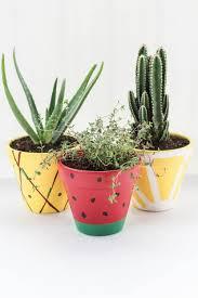 fruit planters via shelterness
