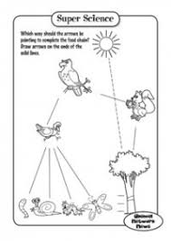 159bd45290183fb8f6411f9992e03311 103 best images about social studies science on pinterest goods on grade 1 science worksheets