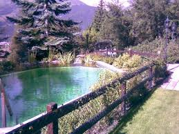 hotel outdoor pool. Beausite Park Hotel: Outdoor Pool Hotel