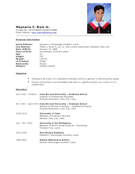 Resume Sample Formats Example Of Resume For Job Application Sample
