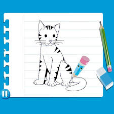 how to draw zarina how to draw a cat