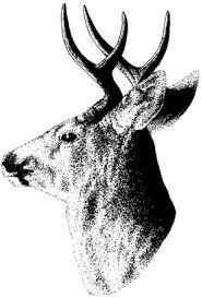 Washington State 2011-2012 Big Game Hunting Seasons & Regulations