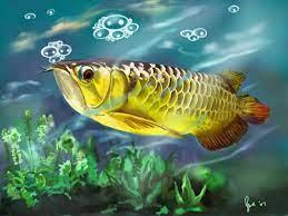Animasi Bergerak Gambar Ikan Bergerak ...