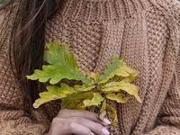 Осень: лучшие изображения (59)   Осенние фотографии ...