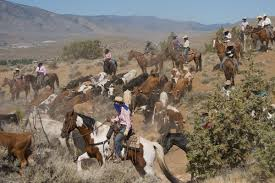 2020 Cattle Drive