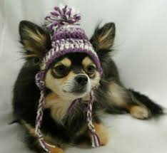 Crochet Dog Hat Pattern Classy Dog Hat With Ear Holes Free Crochet Pattern Google Search