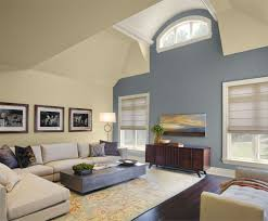 Painting Accent Walls In Living Room Accent Wall Ideas For Living Room Blue Fabric Aemless Sofa Chair