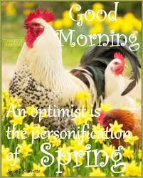 Good Morning Spring Quotes