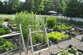 Small Picture Planning Ideas for your Vegetable Garden A Healthy Life For Me