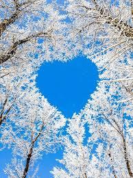 hearts in nature lake pupuke aukland new zealand winters natural heart aww sooo beautiful nature is amazing greece