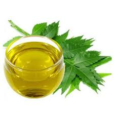 Neem Oil Guide - Benefits of Neem Oil for Skin and Hair - Hamam