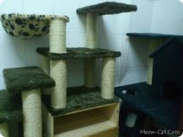 how to building cat tree 1 build a6