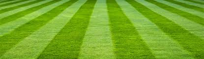 green grass soccer field. Green-striped-grass-soccer-football-field-background-header Green Grass Soccer Field
