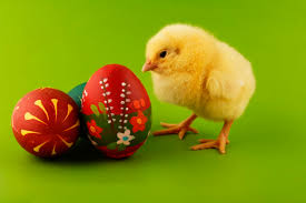 Easter Symbols and Traditions - Easter Bunny, Easter <b>Eggs</b> ...