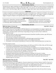 Digital Marketing Resume Template Linkinpost Com