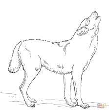 Howling Wolf Coloring Page Free Printable Pages 7 Futuramame