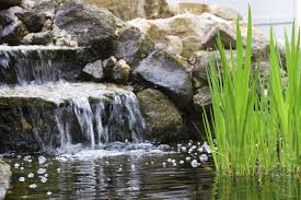 backyard pond waterfalls how to build a pond waterfall in the garden