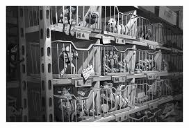 玩具總動員3虐心故事本來在台灣她揭101大樓2天刪光背後祕辛