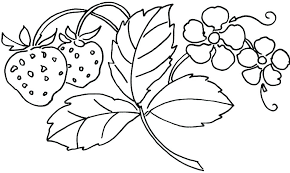 Cute Spring Flower Coloring Pages Flowers For Preschoolers Colouring