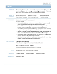 Cv Accountant Example 2 Handtohand Investment Ltd