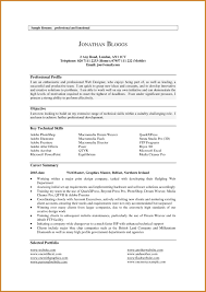 Resume Professional Summary Sample Resume Professional Summary Example Achievable Drawing Sample 17