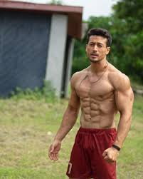 Tiger Shroff Photo Hd Best Bear And Tiger India Friends Zone