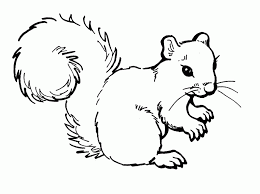 Free Printable Squirrel Coloring Pages For Kids Maracas Music