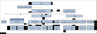 Organisation Chart Aami Ashmore Group