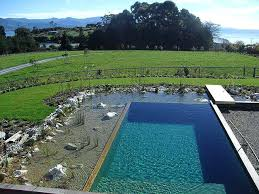 diy natural swimming pool natural swimming pool diy natural swimming pool australia diy natural swimming pool