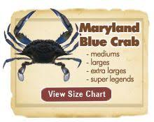 Md Crab Size Chart 31 Best Blue Crab Images Crab Art Crab Painting Blue