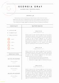 Infographic Resume Template Free Unique Free Infographic Resume