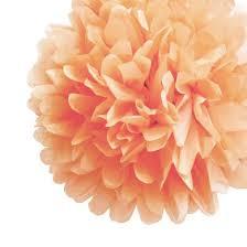 How To Make Fluffy Decoration Balls EZFluff 100 Blush Tissue Paper Pom Poms Flowers Balls Hanging 30