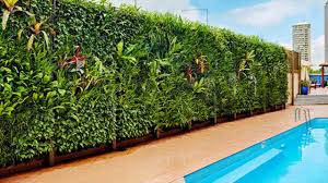 Small Picture Indias First Vertical Garden Is At Bangalore YouTube