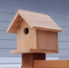 this is another birdhouse that would be great as a family project it is very inexpensive and the design is very simple