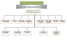 Iloilo Mission Hospital Organizational Chart Municipal Agriculture Office Organizational Chart