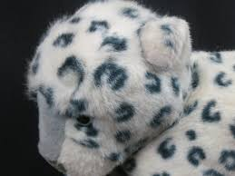 baby white cheetah. Interesting Baby You Are Bidding On A 14 Throughout Baby White Cheetah