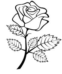 rose colouring pages 13
