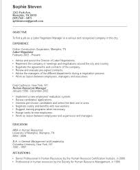 Objectives For Resume Samples An Example Of A Good Resume Best ...