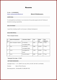 Sample Resume Format For Mba Marketing Fresher Best Resume Format