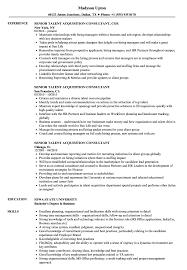 Senior Talent Acquisition Consultant Resume Samples Velvet Jobs