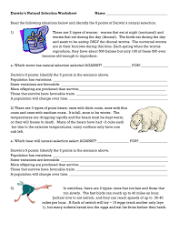 Evolution Study Guide Answers moreover  additionally natural selection essay natural selection biology video by in addition Lamarck vs Darwin Worksheet   St  Dominic High School    Evolution further a What ostrich will natural selection select AGAINST slow further Darwin Worksheet Free Worksheets Library   Download and Print furthermore Darwin s Natural Selection Worksheet further Darwins Natural Selection Worksheet   Accafkenya org further Darwin s Natural Selection Worksheet moreover  furthermore Natural Selection Worksheet   YouTube. on darwin s natural selection worksheet