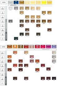 Redken Hair Color Chart Pdf Shades Color Chart Gels Hair Shade Redken Pdf Fusion