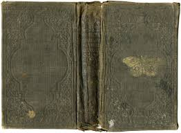 the book is s ilrated natural history by worthington m d it was published in 1864 book cover grunge texture free vine image